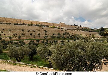 View of the Kidron Valley and the Temple Mount in Jerusalem