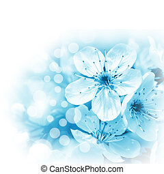Flowering cherry - Blue flowers on white background