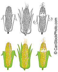 Corn Vector Illustration on white - Corn Vector Illustration