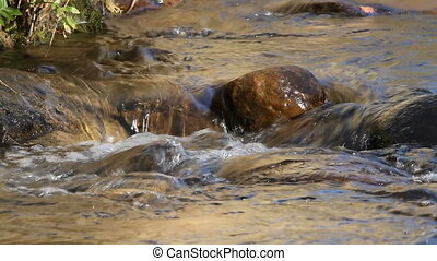 Mountain stream - Flowing water of a small mountain stream