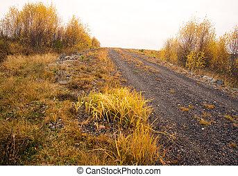 Dirt road in autumn