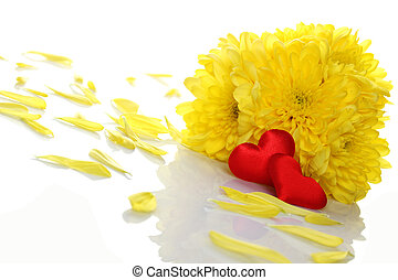 Chrysanthemums with two red hearts