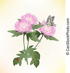 pink asters and butterfly