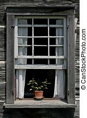 a, fleur, pot, vieux, fenêtre, rebord