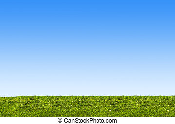 blue sky and grass background - ble sky ang green grass...