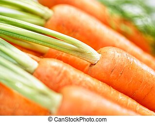 Bunch of crunchy carrots close-up - Bunch of harvest-fresh...