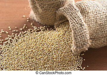 Raw white quinoa grains in jute sack on wood. Quinoa is grown in the Andes and is valued for its high protein content and nutritional value (Selective Focus, Focus one third into the quinoa)