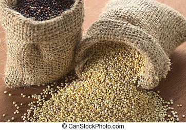 Raw white quinoa grains in jute sack on wood with red quinoa in other sack standing. Quinoa is grown in the Andes and is valued for its high protein content and nutritional value (Selective Focus, Foc