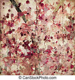 Grunge, rosa, flor, bambú, antigüedad, Plano de...