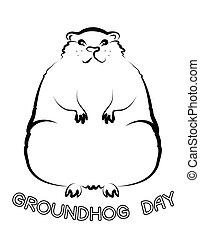 groundhog, giorno, vettore, grafico, cartolina, fondo