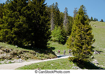 Mountain Bike Riders on a trail in the Bavarian Alps near...