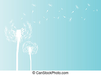 dandelion-in-the-wind - Vector illustration of blowing...