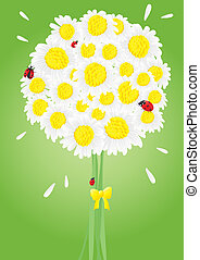bouquet-of-camomiles - Vector illustration of bright bouquet...