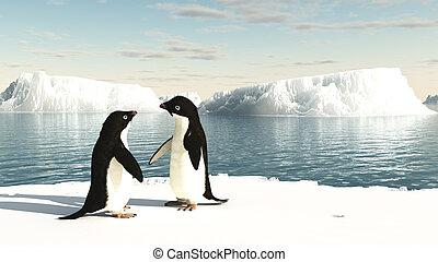 Adelie Penguins on an iceberg - Pair of Adelie penguins...