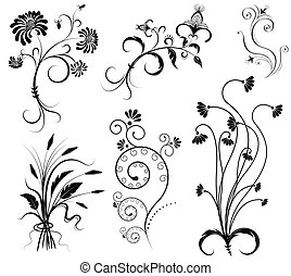 Vector floral decoration on white.Black graphic elements