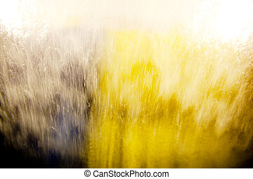 Car Wash Window Abstract - Window of a car in an automatic...