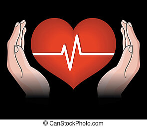 human heart in hands isolated on black background