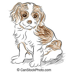 Posed Cavalier King Charles Spaniel Puppy Dog - An image of...