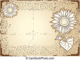 Sunflower .Vector vintage postcard with grunge elements