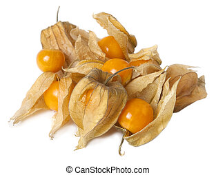 Physalis fruits