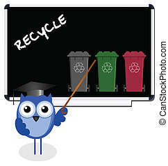 Owl teacher with recycling message on blackboard