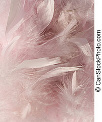Fluffy pink feather background with corner highlight