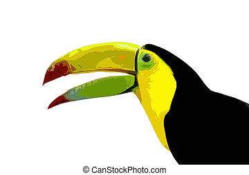 toucan behind art illustration - toucan behind a white...