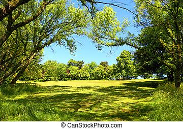 綠色, 公園