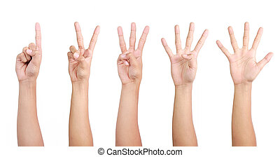 hand gestures counting from 1 to 5 isolated on white