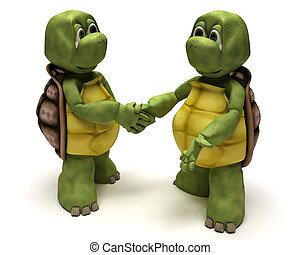 烏龜, 振動, 手