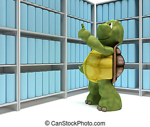 Tortoise with books in library - 3D Render of a Tortoise...