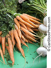 Carrots and turnips - Fresh carrots and turnips for sale at...