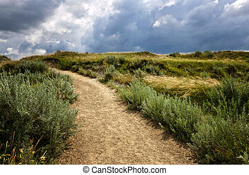 Trail in Badlands in Alberta, Canada - Walking trail in...