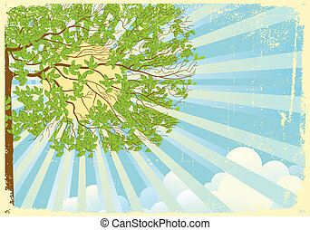 Tree landscape with sun rays and clouds - Tree with green...