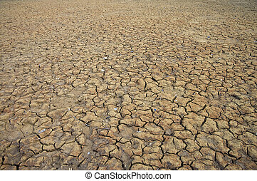 Dry Cracked Earth - A area of dry land for a drought concept...