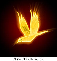 silhouette of a bird against dark background