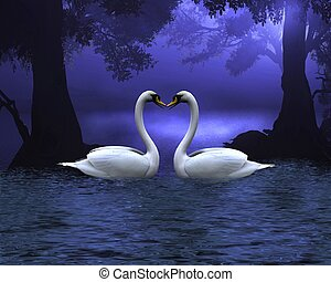 Swan Scene at Evening - Two swans on a wooded lake at...