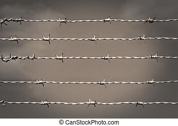 Barbed wire in sepia