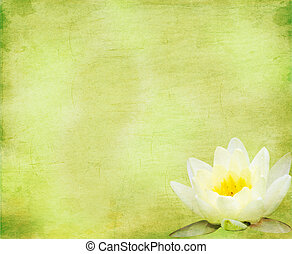 Green floral background with lily