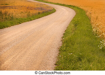 Dirt road in a wheat field