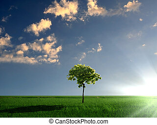nature landscape with clouds