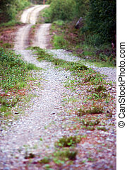 Winding dirt road - Close up of winding dirt road in a...