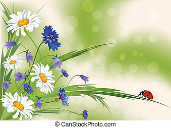 floral background - vector floral background with ladybird...