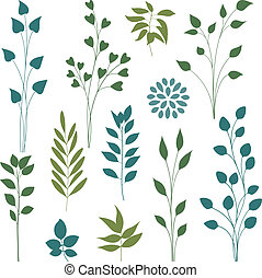 Leaf elements - Set of various leaf design elements Vector...