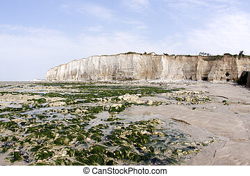 Chalk cliff along the beach in Normandie in France