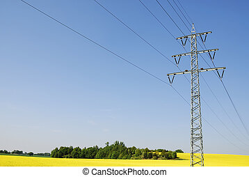 Power line through a rape field