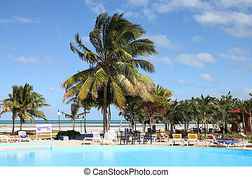 Holiday resort - Cuba - famous Cayo Coco area. Swimming pool...