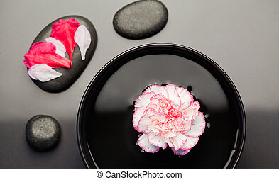 White and pink carnation floating on a bowl with black stones around it and petals on one of the stone