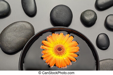 Orange gerbera floating in a bowl surrounded by black pebbles