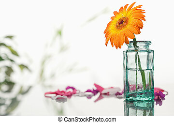 Orange gerbera in a glass flask with pink petals and leaves...